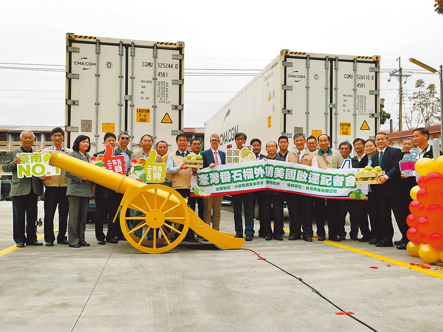 台灣第一櫃外銷美國番石榴,27日上午於台南市楠西區威名青果公司的集貨包裝場啟運出發。(劉秀芬攝)