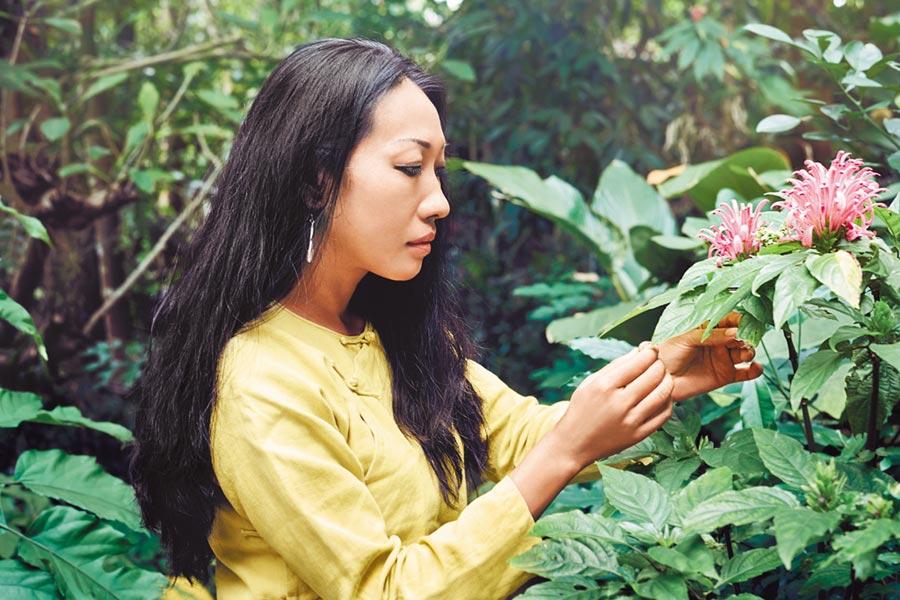 大陸雲南的天籽自然保護區是嬌蘭在全球整合性蘭花研究平台之一。(嬌蘭提供)