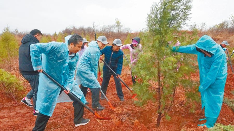 4月20日,近200位台商、台生來到北京市房山區張坊鎮南白岱村的「在京台胞綠化基地」,進行公益植樹活動。(中新社)
