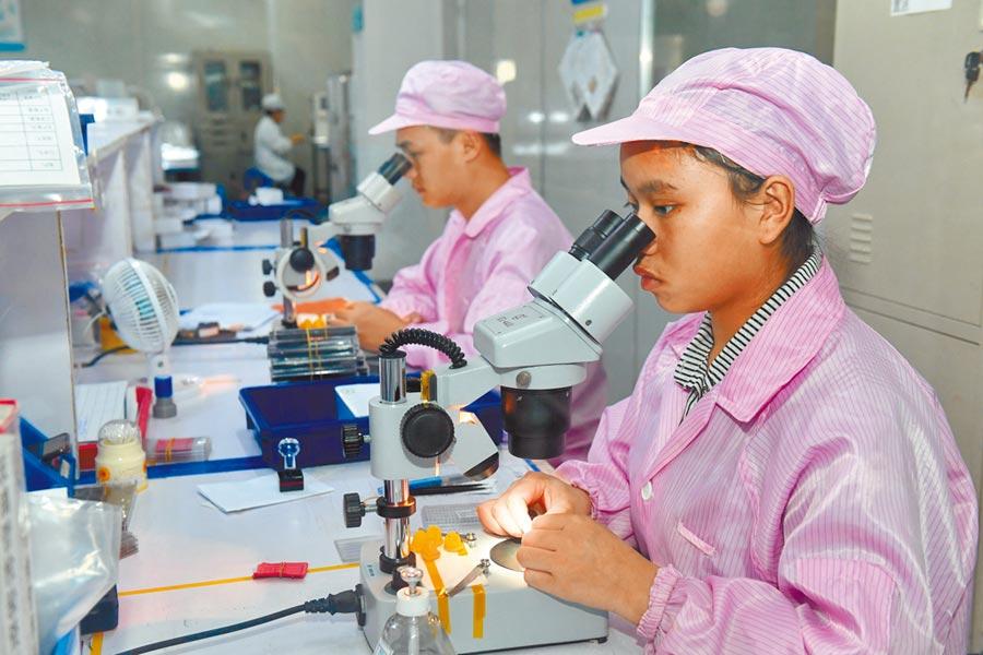 7月27日,莆田一家公司的工人在生產光電產品。(新華社)