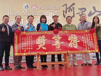 阿里山高山茶冬季茶競賽 特等獎每斤最高喊出6萬元