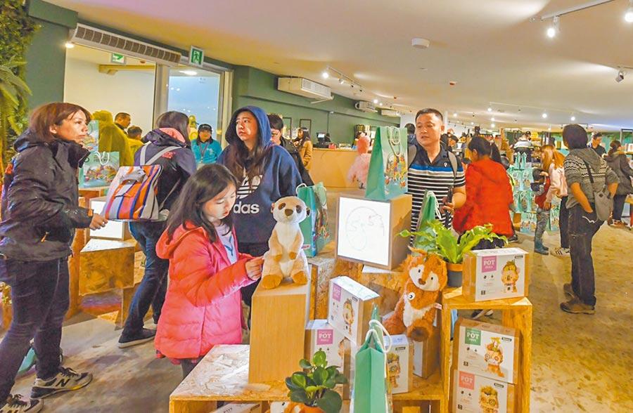 新竹市立動物園熱鬧開幕,園內紀念品店販售的開園限定一卡通、杯墊和動物徽章是3大熱銷商品。(羅浚濱攝)