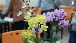 長榮蘭花學程多元行銷 蘭花可吃又可美容保養