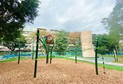新店攀爬趣  5米高樹屋繩索遊戲場大挑戰