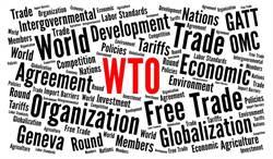 德國研究:這三國在世貿組織受益最大