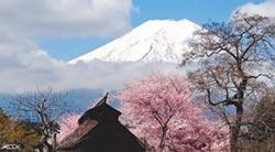 春節出國高峰 日本仍是台灣客首選