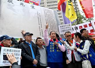 抗議《反滲透法》 統促黨總裁張安樂簽生死狀