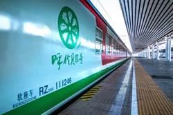 哈爾濱「呼倫貝爾號」草原森林旅遊列車 元旦正式開行