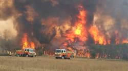 悚!野火燒上消防車畫面曝 澳洲厄運還沒完