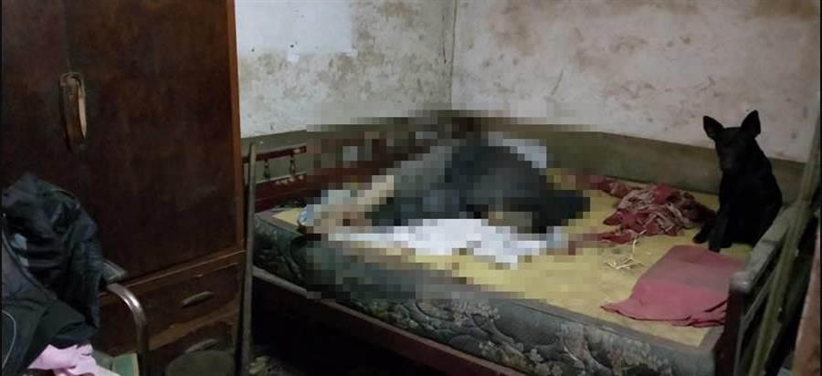獨居老翁猝死於家中,黑狗相伴忠心護主。(翻攝照片/巫靜婷苗栗傳真)