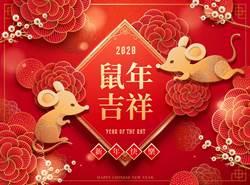 農曆春節將屆、防堵豬瘟疫情 邊境管制緊盯