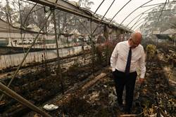 澳洲總理被罵到臭頭 擬取消訪印 又遭批影響戰略合作