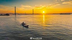 生態悲歌 長江白鱘滅絕
