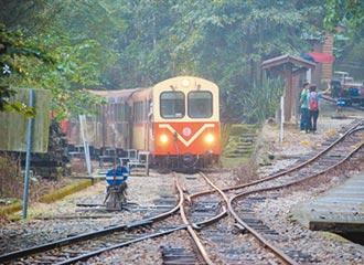 林鐵主題列車 邀你感受四季特色