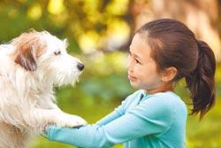 寵物8歲前投保 續保無年齡上限