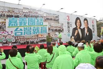 台僑來「嘉」助選 蔡易餘:美支持讓台灣走民主這條路