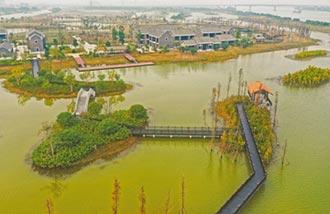 翠亨濕地公園實施預約入園