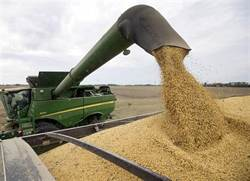 爆買美大豆再等等? 陸稱不調整3大農產品進口配額