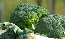 降膽固醇又防癌 就吃這款蔬菜