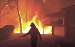 森林野火延燒 衝擊澳洲經濟