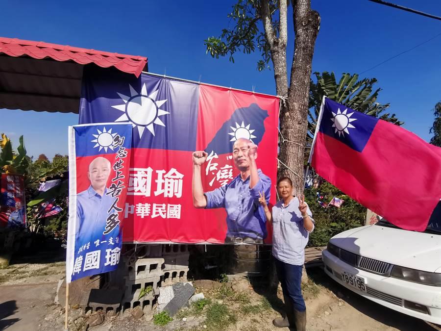 台南新化區公路花園旁插滿支持韓國瑜的旗幟,十分引人注目。(劉秀芬攝)