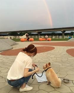 王心凌愛犬布魯托病逝 痛心「曾經擁有你是我最幸福的事」
