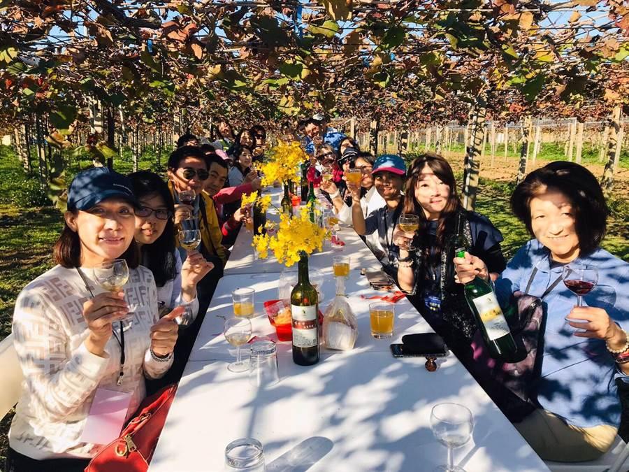 踩線團參訪行程到外埔在葡萄樹下浪漫品酒。(台中市政府觀旅局提供/陳世宗台中傳真)