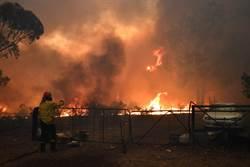 野火撤離25萬人 街頭抗議政府無能:澳洲已成煉獄