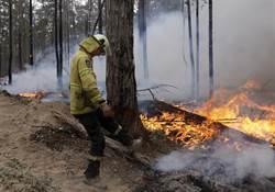首度承認應對失當 澳洲總理將徹查野火危機