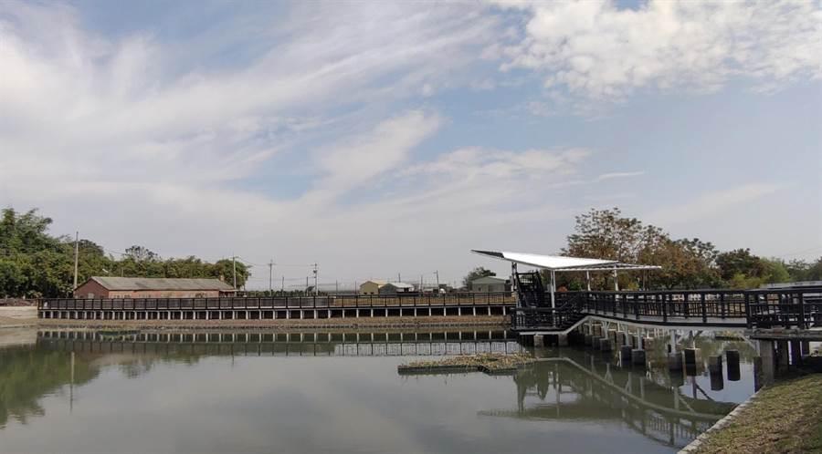 好收社區水池化身生態農塘,打造北港鎮新景點。(呂耀中提供/張朝欣雲林傳真)