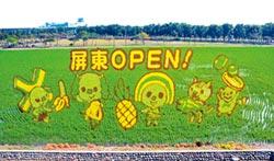 熱帶農業博覽會 OPEN家族登彩稻
