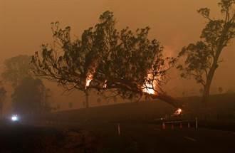 澳洲林火煙霧遠飄 NASA:將繞地球一圈