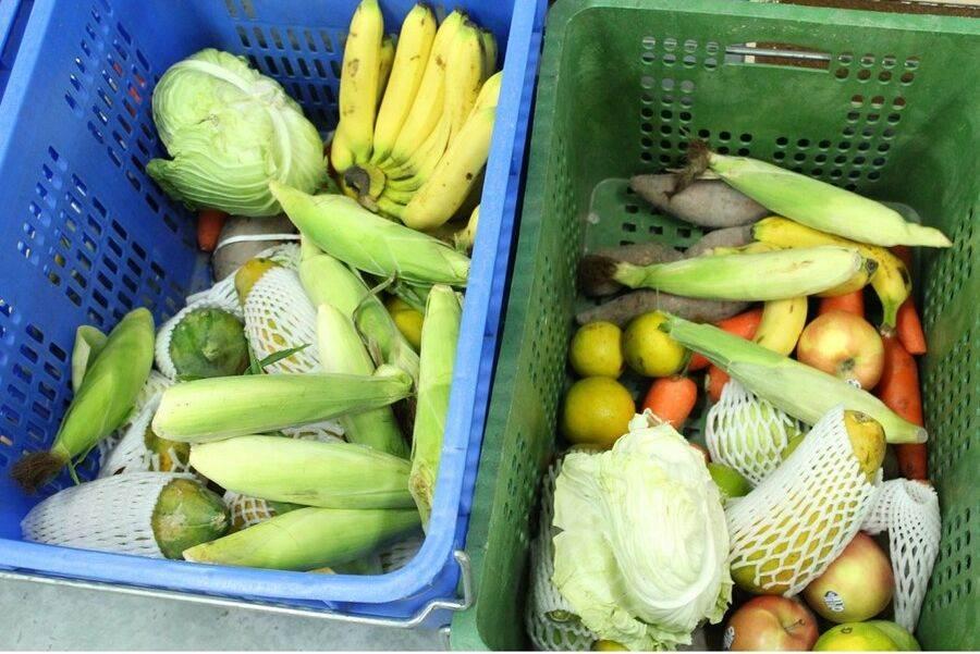 豐富的當季蔬果和肉類蛋白質是準備給雜食性的臺灣獼猴和白鼻心。(台北市立動物園提供)