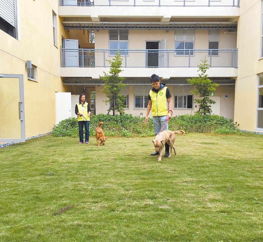 全新的新竹市動物保護教育園區將於18日啟用,市府當天規畫多項精彩活動,歡迎民眾帶著毛小孩前來同歡。(陳育賢攝)