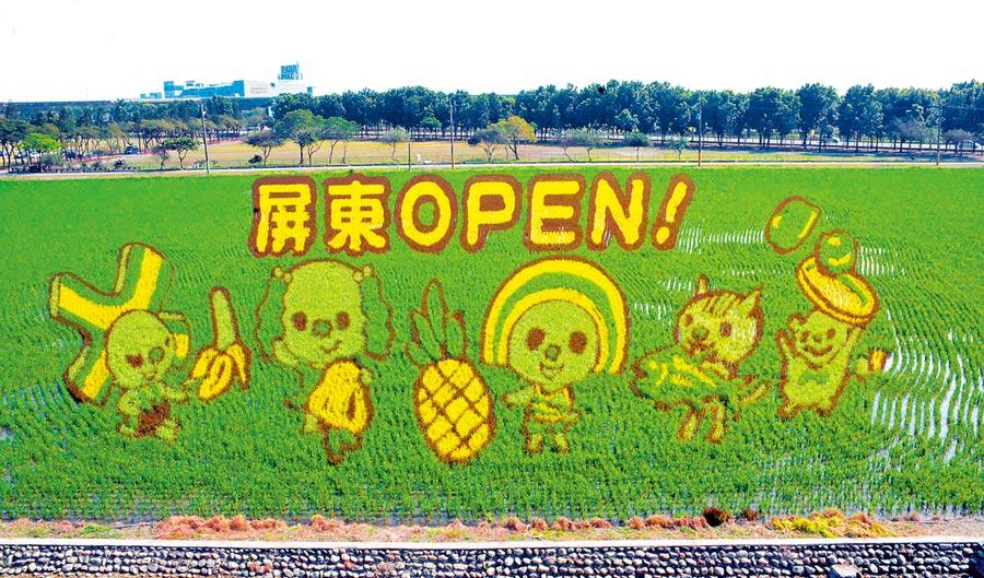 屏東熱帶農業博覽會眾所期盼的彩稻圖案,今年由超人氣明星OPEN家族代言,打造可愛魅力農業主題樂園。(林和生攝)