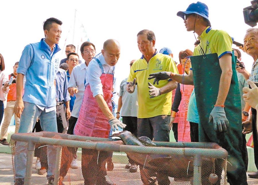 高雄市長韓國瑜訪視石斑魚產銷班,感受漁民辛勤養殖成果。(本報系資料照片)