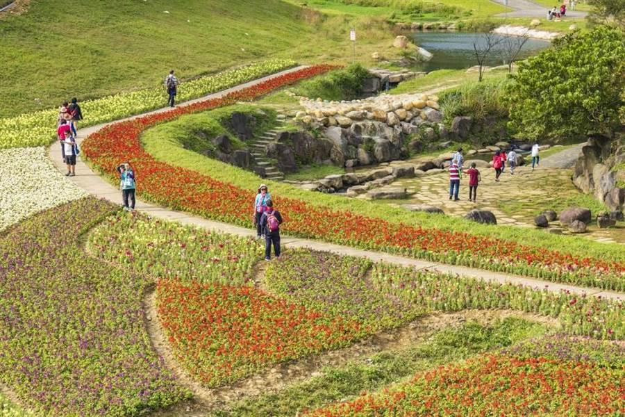 趁著難得的7天連假,到河濱公園賞花吧。(圖取自台北旅遊網)