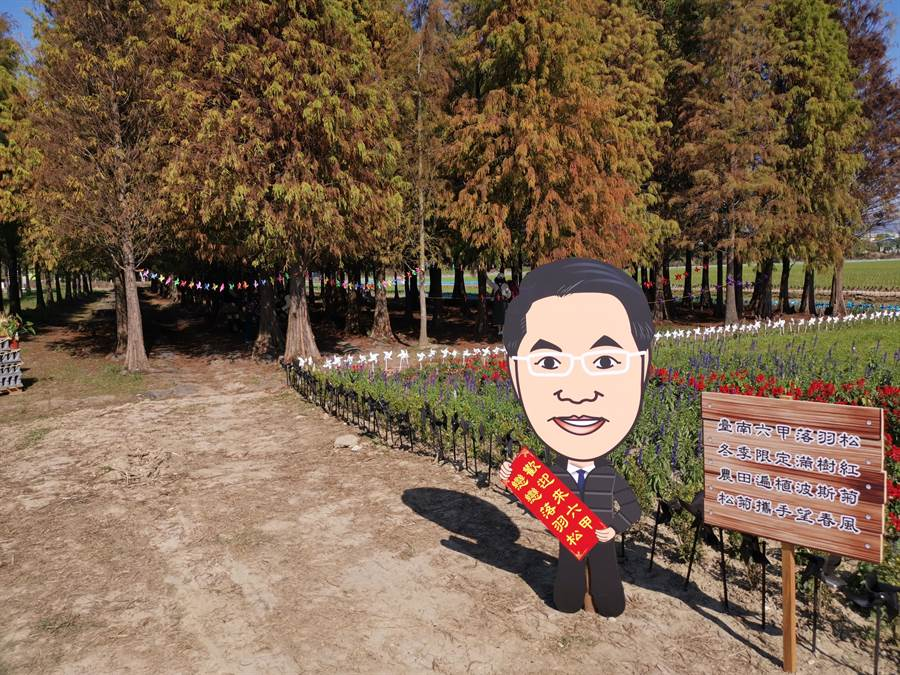 六甲區公所於落羽松森林旁以盆栽花卉進行環境美化。(劉秀芬攝)