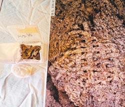 仰韶絲綢 鄭州5千年前生產