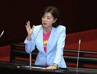 藍委王育敏代理國民黨文傳會主委