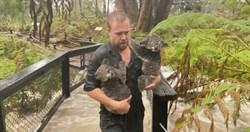 澳洲火還沒滅完!暴雨釀「斷電封路」 氣象單位示警:洪水警告