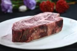 獨》不是只有安格斯好 國賓A CUT牛排館「肉搜」引進牠