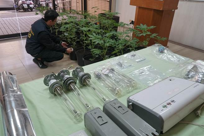 台中市警局刑事警察大隊偵二隊,21日公布破獲大麻種植場及大麻包裝加工廠,查扣53株大麻、大麻成品及栽種、製造、包裝工具。(黃國峰攝)