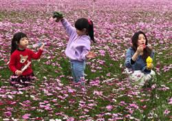 春節親子遊金門  高空到地面開心玩