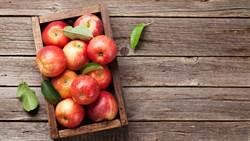 有效抗空汙!研究指出多吃蘋果潤肺更年輕