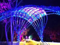 2020台灣燈會「漫遊客家庄燈區」 布燈進度達90%