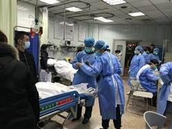 2020武漢風暴》國際公共衛生專家:武漢疫情初期應對不及格