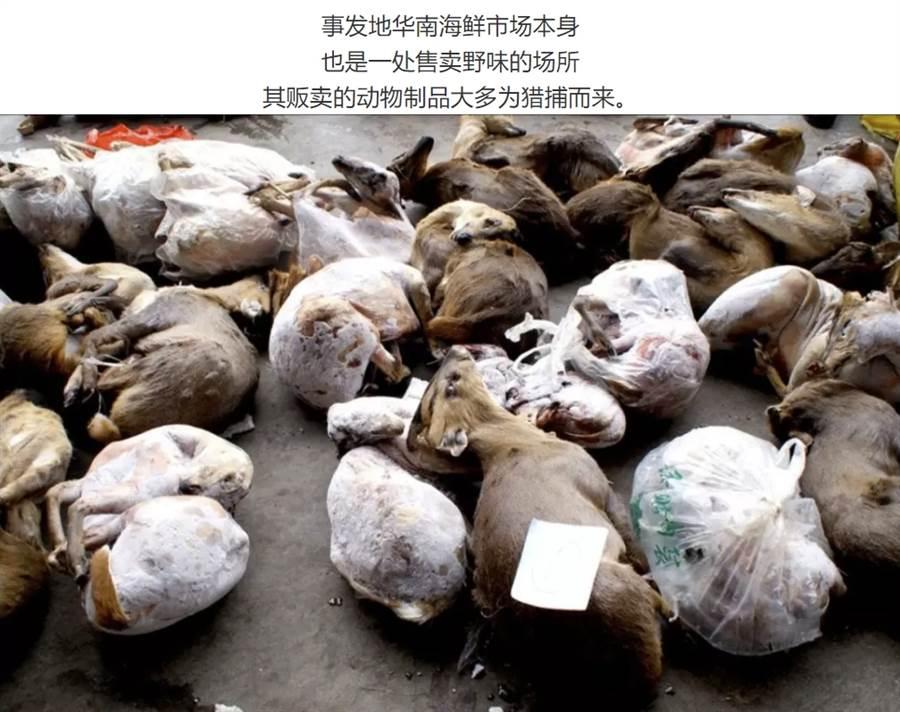 攤商大肆濫捕野生動物後運送至海鮮市場內販賣 (圖/翻攝自微信公眾號@多維面面觀)