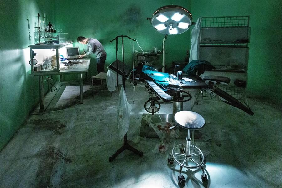 藝術家張辰申作品「2019肉身計畫 謬思的外科手術 厚植」,燈光昏暗、冷冽的手術室內,有一顆植入人髮的豬頭,詭譎的氛圍下,呈現難以言喻的荒謬與衝突感。(袁庭堯攝)