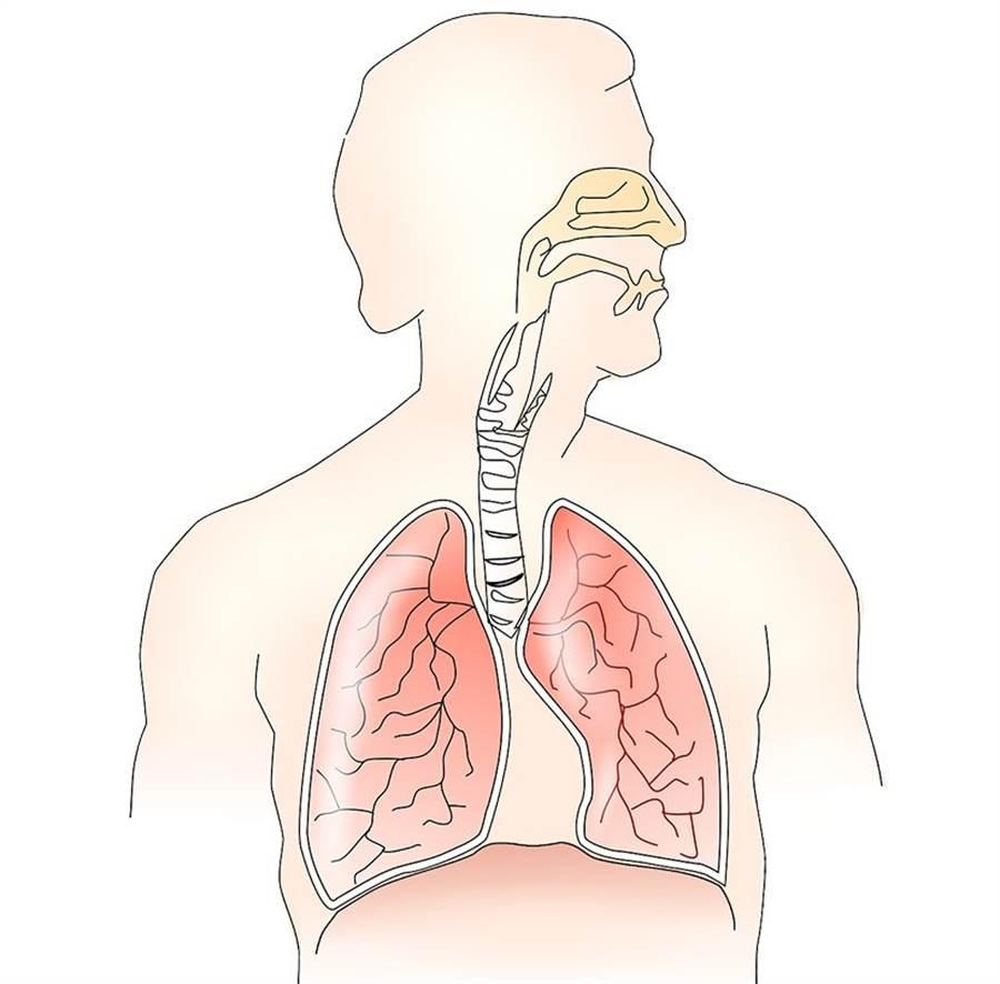 平常練習腹式呼吸,可以幫助緩和購物的衝動。(圖片來源:pixabay)